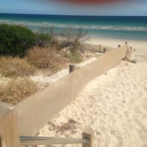 SAND DRIFT FENCE