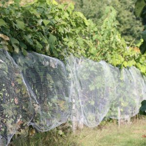 VINEYARD SIDE NETTING